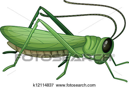 Clip Art - A grasshopper. Fotosearch - Search Clipart, Illustration  Posters, Drawings,