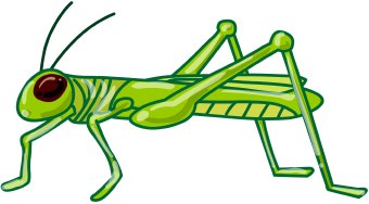 Grasshopper Clip Art-Grasshopper Clip Art-8