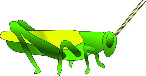 Grasshopper Clip Art-Grasshopper Clip Art-9