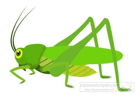 Green-grasshopper-insect-clipart-725.jpg-green-grasshopper-insect-clipart-725.jpg-13
