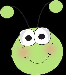 Grasshopper Face-Grasshopper Face-18