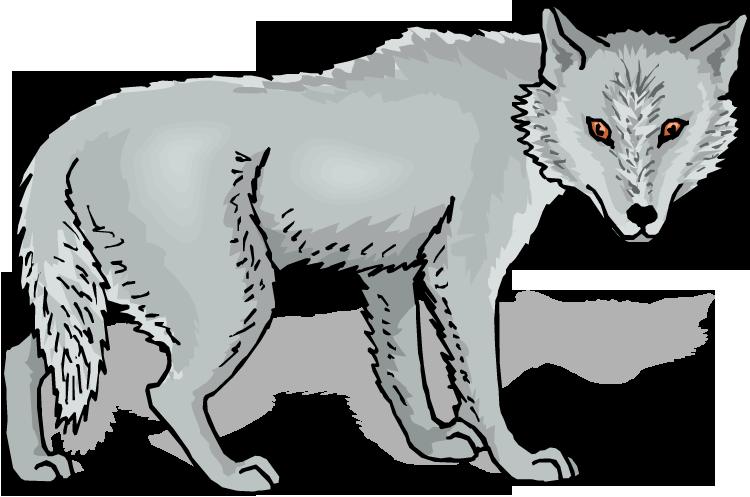 Gray Wolf Clip Art-Gray Wolf Clip Art-2