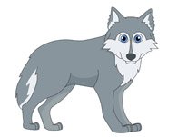 Gray wolf. Clip art look at