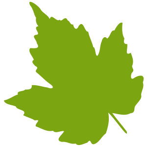 Green Leaf Clipart-green leaf clipart-2