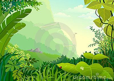 Green Amazon Forest With .-Green Amazon Forest With .-12