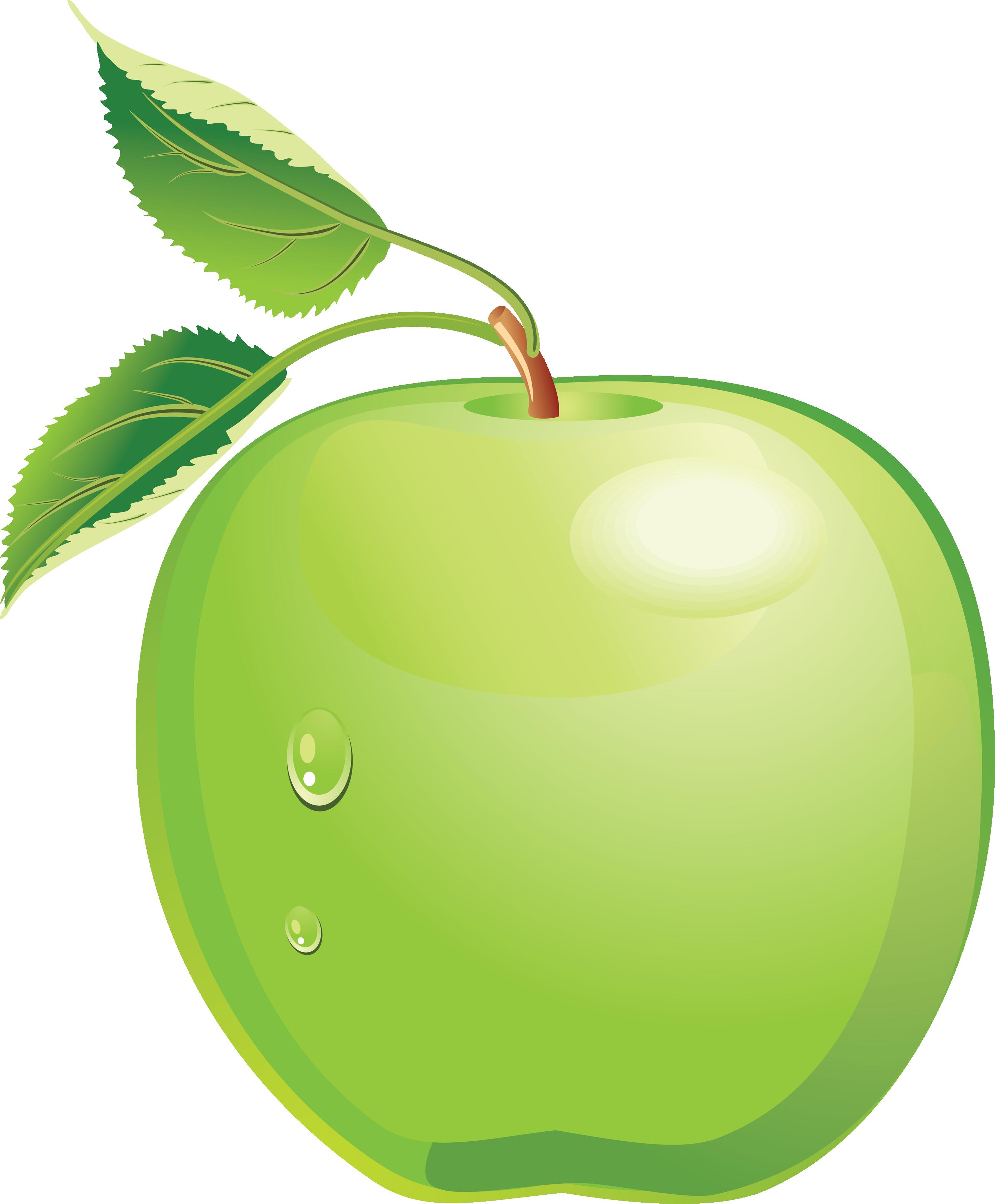 Green Apple Clip Art u2013 Clipart .