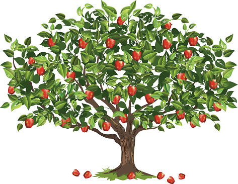 59 Apple Tree Clipart Clipartlook