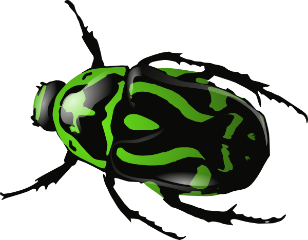 Green Beetle Clip Art At Clker Com Vecto-Green Beetle Clip Art At Clker Com Vector Clip Art Online Royalty-7