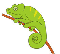 Green Chameleon Reptile Clipart Size: 60 Kb