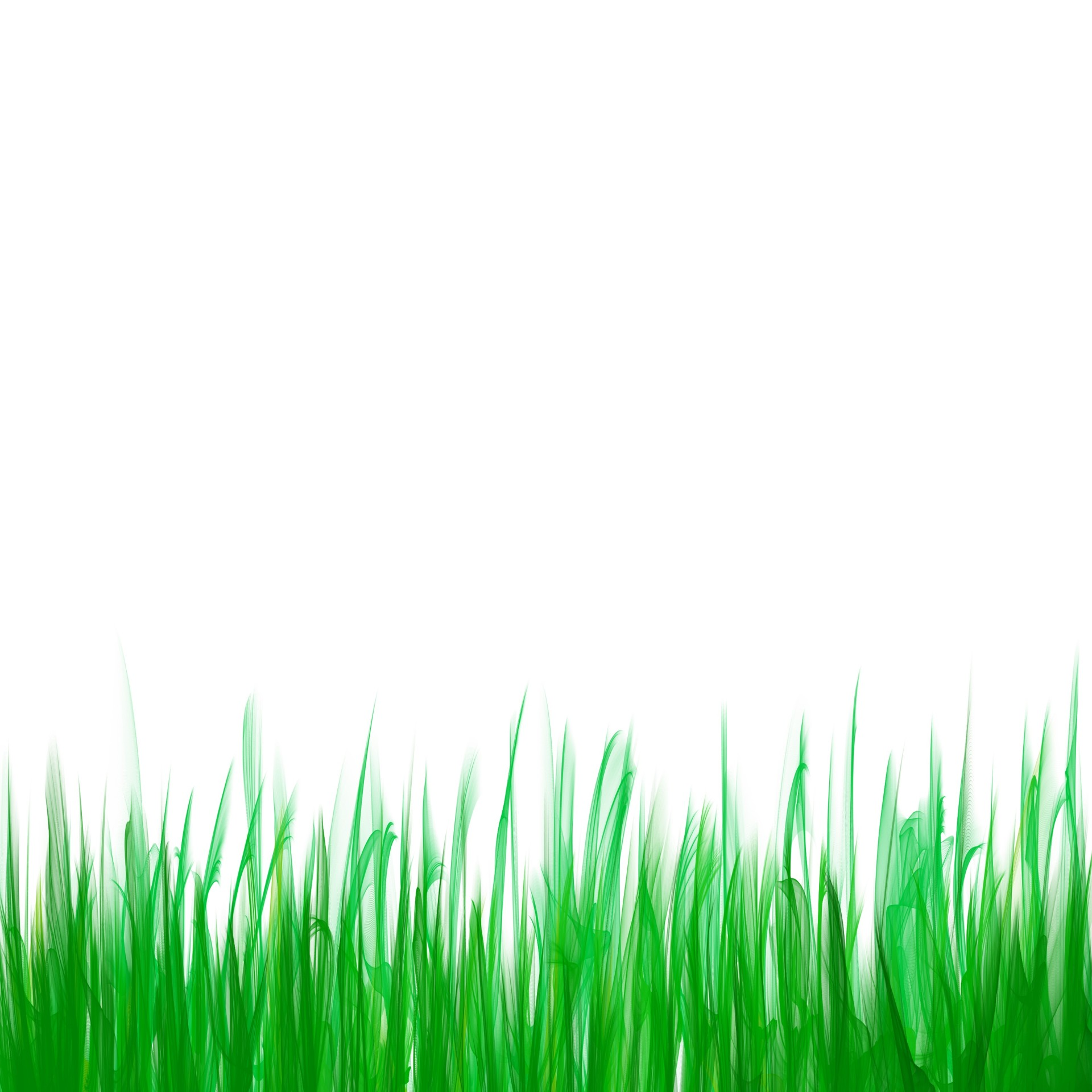 Green Grass Background ...