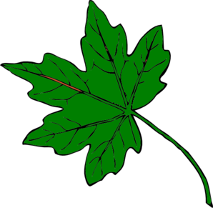 Green Maple Leaf Clipart Clipart Panda F-Green Maple Leaf Clipart Clipart Panda Free Clipart Images-7
