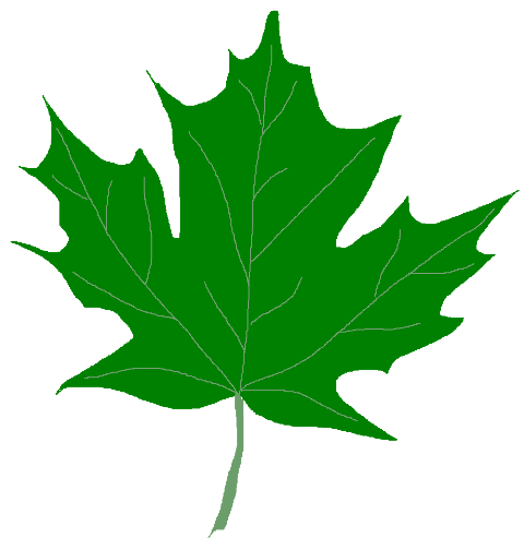 Green Maple Leaf Clipart .-Green Maple Leaf Clipart .-6