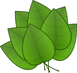 Green Pumpkin Leaf Clipart .-Green pumpkin leaf clipart .-6