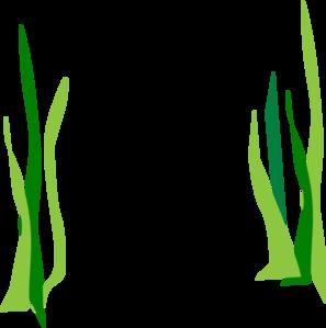 Green Reeds Clip Art At Clker Com Vector Clip Art Online Royalty