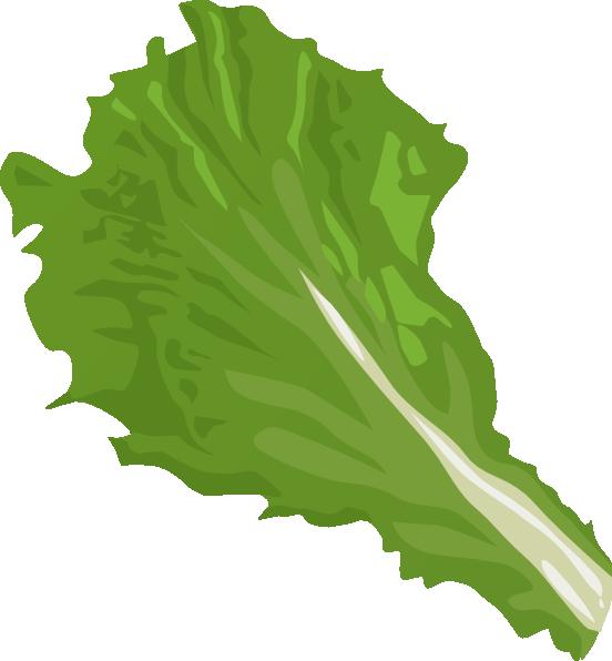 Green Salad With Shrimps And Lemon Isola-Green Salad With Shrimps And Lemon Isolated On White Background u0026middot; Sponsor Clipart-5
