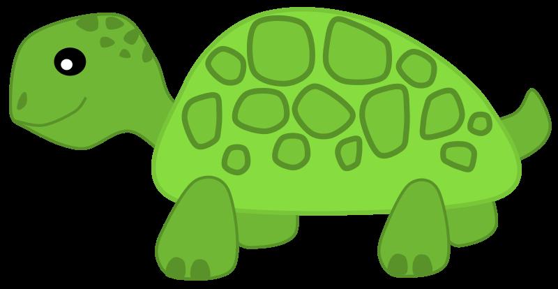 Green tortoise clipart clipartall