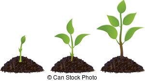 ... Green Young Plants - Green Young Pla-... Green Young Plants - Green young plant life process,.-3