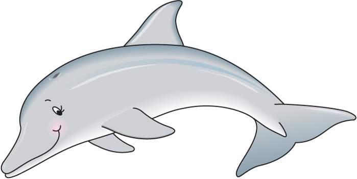 Grey dolphin clip art cwemi images gallery