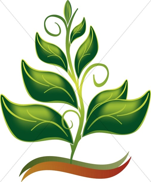 Growing In The Spirit Color Clipart
