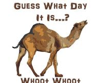 Guess What Day It Is Whoot Whoot-Guess What Day It Is Whoot Whoot-6