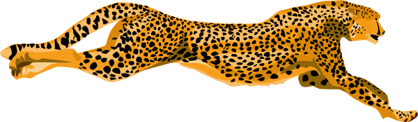 Ha Flosse Leopard Cheetah. »-Ha Flosse Leopard Cheetah. »-2