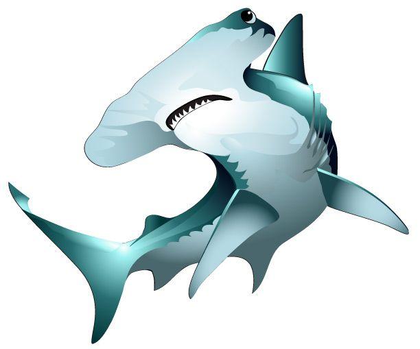 ... Hammer Shark Clipart; Hammerhead Ill-... hammer shark clipart; Hammerhead Illustration, Vector Clipart, Vector Saltwater, Saltwater Sport, Saltwater Fish, Illustrations ...-10