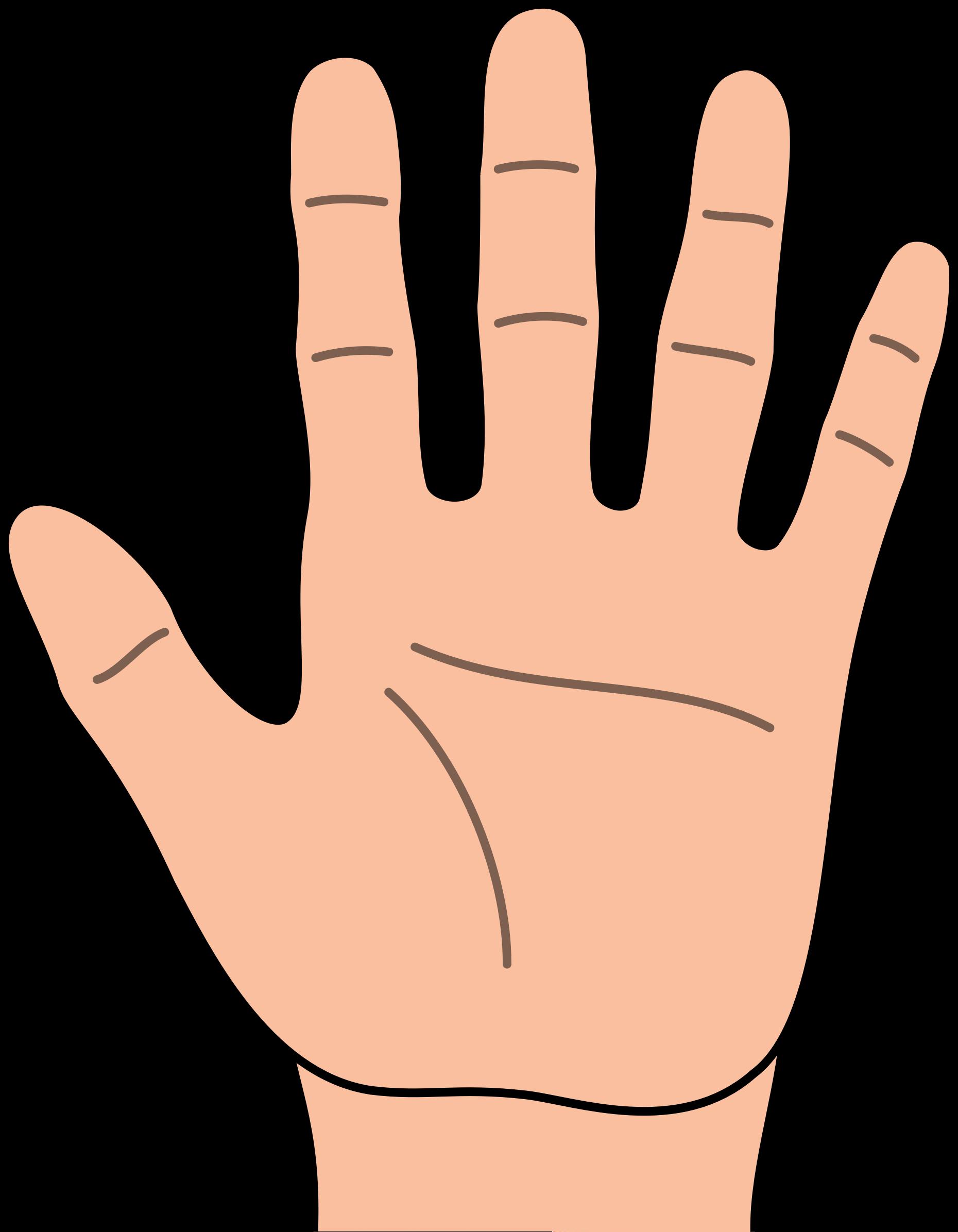 Hand Clip Art u0026middot; hand clipart