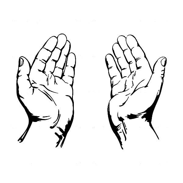 Hands Clip Art to Download - dbclipart c-Hands Clip Art to Download - dbclipart clipartall.com; Open ...-13