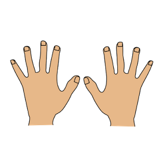 Only 2 hands clipart kid