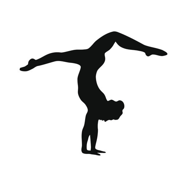 Usa gymnastics member clubs c