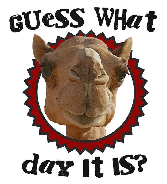 Happy Hump Day Clipart-Happy Hump Day Clipart-5