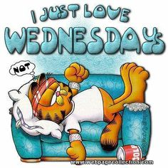 Happy Wednesday Graphics .-Happy Wednesday Graphics .-10