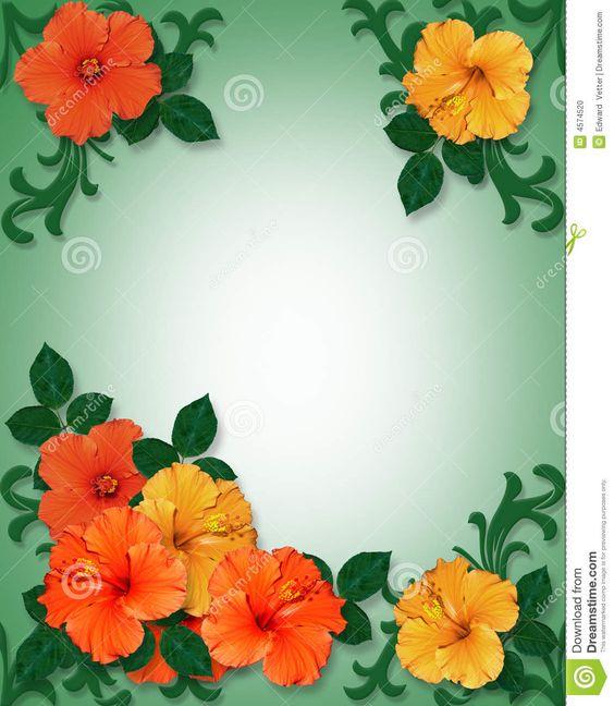 Hawaiian Clip Art Borders | Tropical Border Clip Art Tropical hibiscus flowers