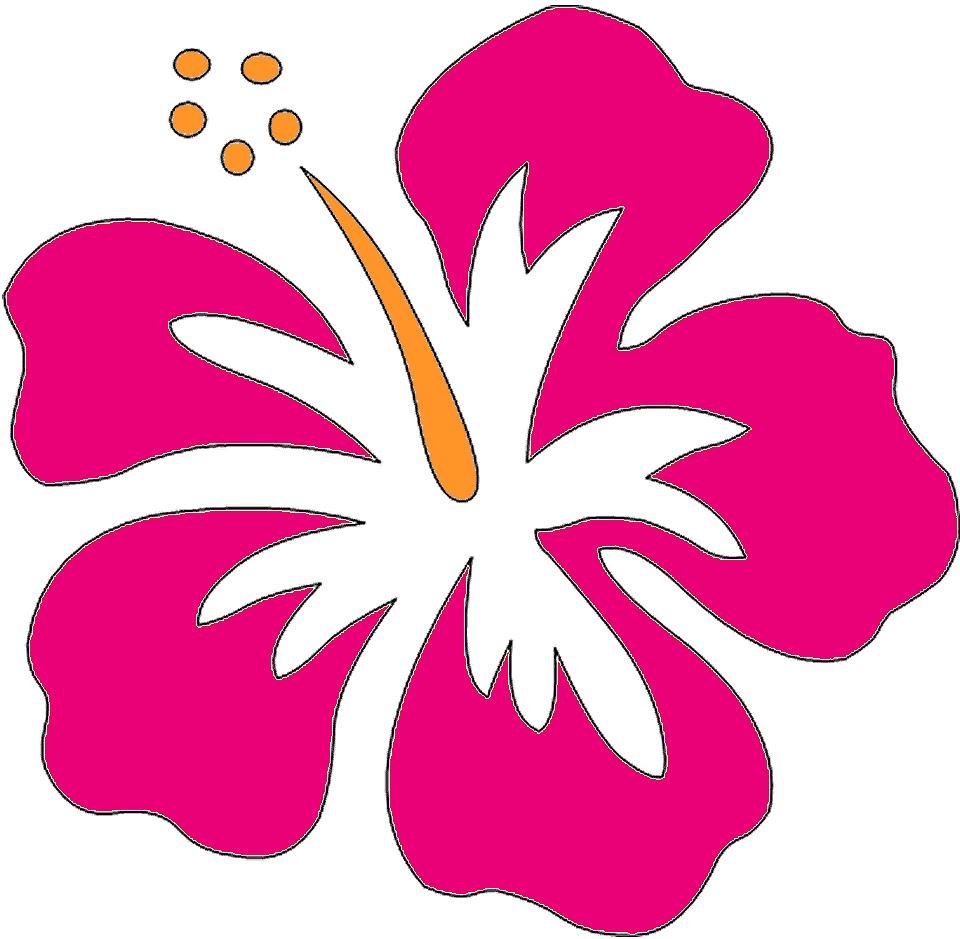 Hawaiian flower hawaii clipart .