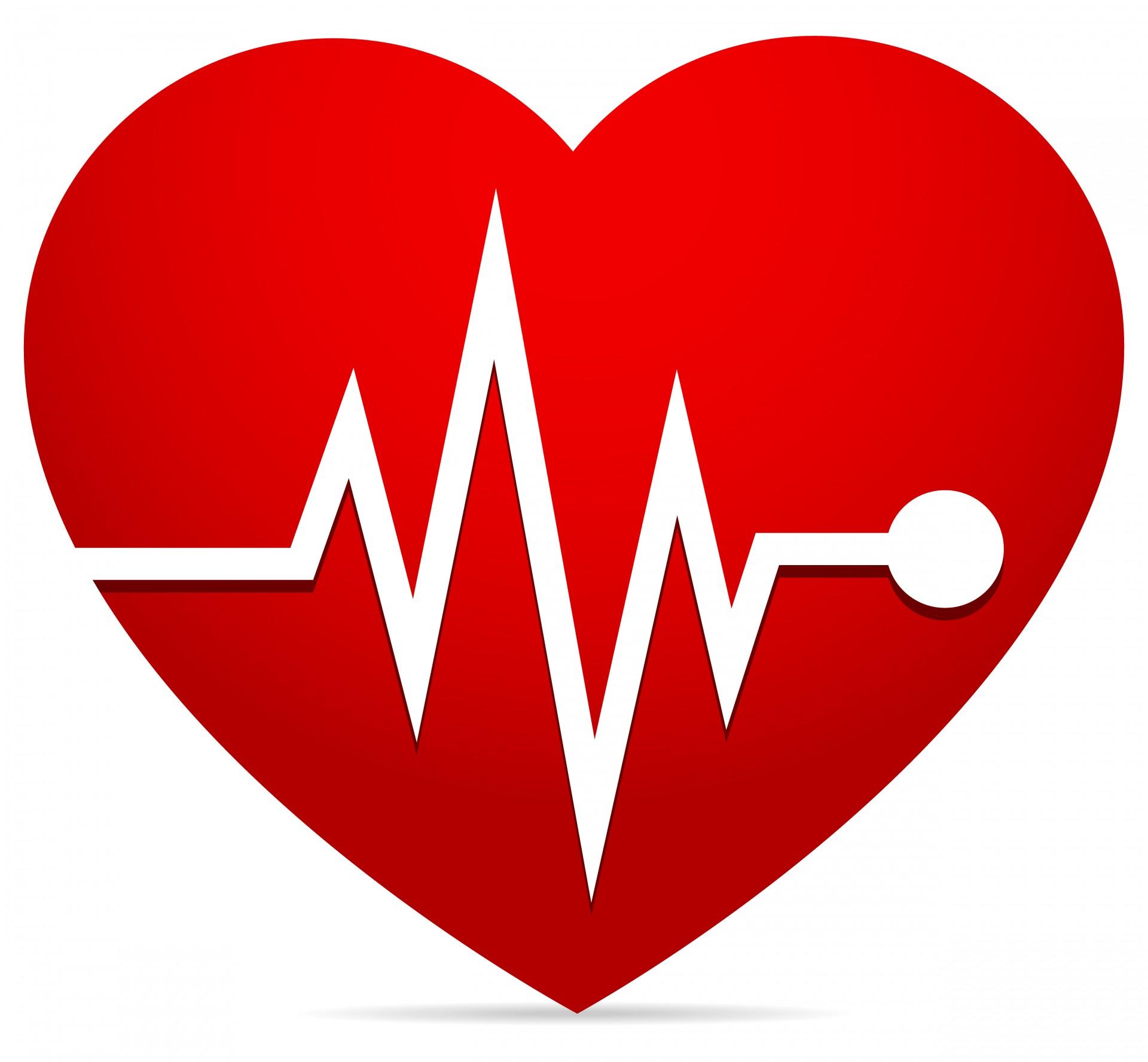 Heart Rate Ekg Ecg Heart Beat Free Stock Photo Hd Public Domain