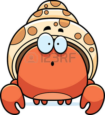 hermit crab: A cartoon illustration of a-hermit crab: A cartoon illustration of a hermit crab looking surprised. Illustration-14