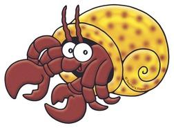 Hermit crab clipart - . Hermit Crab-Hermit crab clipart - . Hermit Crab-0