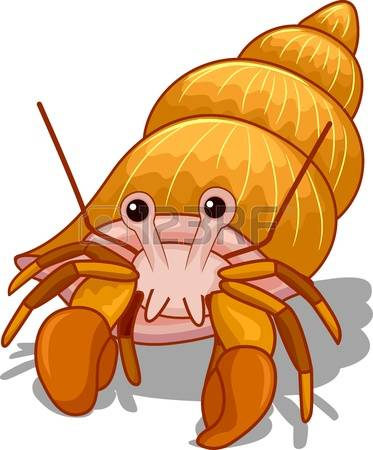 hermit crab: Illustration of a Golden He-hermit crab: Illustration of a Golden Hermit Crab with its Head Exposed-15