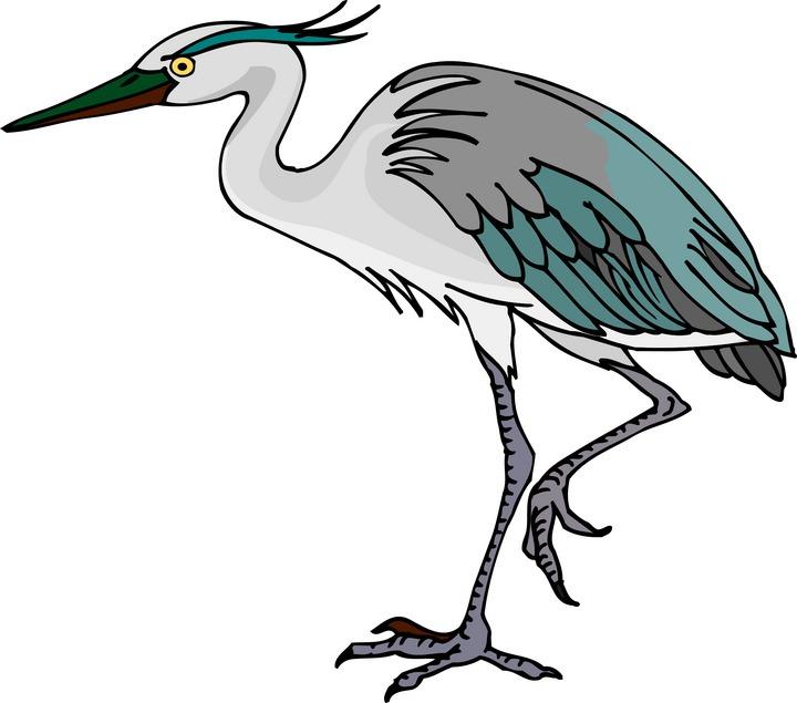 Heron Clip Art-Heron Clip Art-0