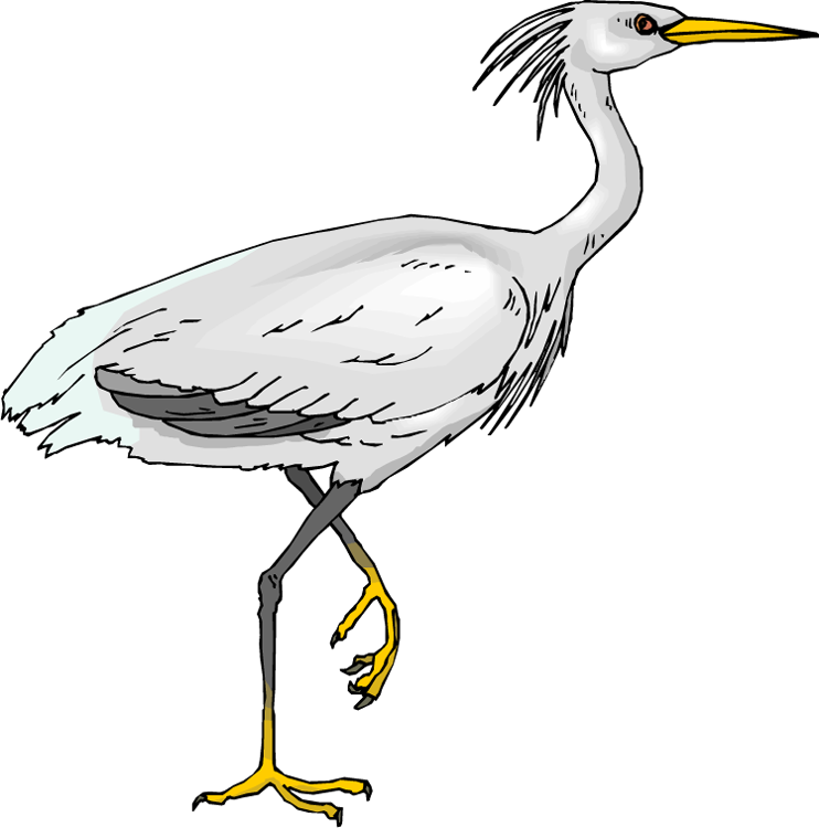 Heron Clipart-Heron Clipart-4