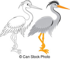... Heron - Grey heron, color and black and white outline vector.