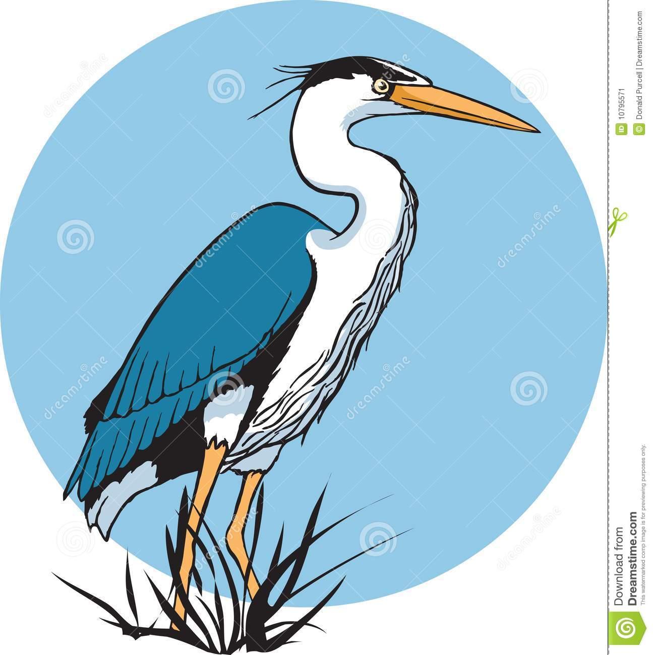 Heron Stock Image-Heron Stock Image-5