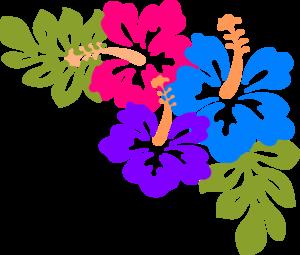 Hibiscus Flower Border .-Hibiscus Flower Border .-10
