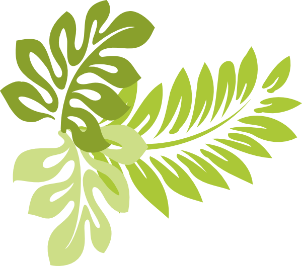 Hibiscus Leaves Clip Art At ..