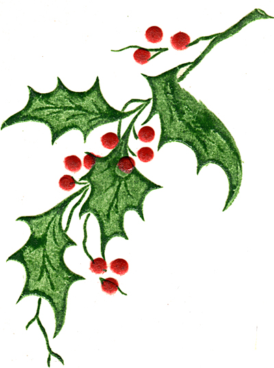 Holly Leaf And Berries - Clipart library
