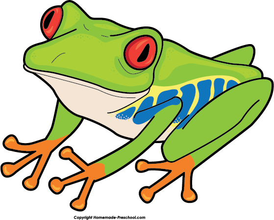 Home Free Clipart Frog Clipart Red Eyed Tree Frog