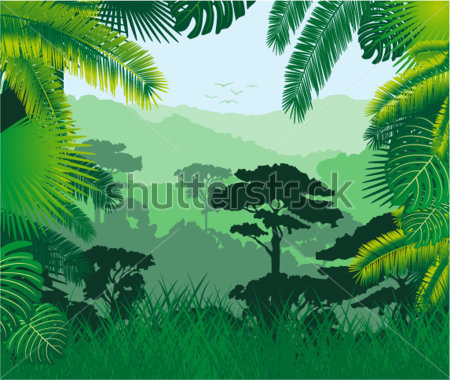 Home Premium Parks Outdoor Vector Tropic-Home Premium Parks Outdoor Vector Tropical Rainforest-2