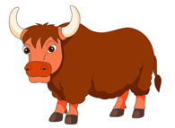 horned yak clipart. Size: 38 Kb