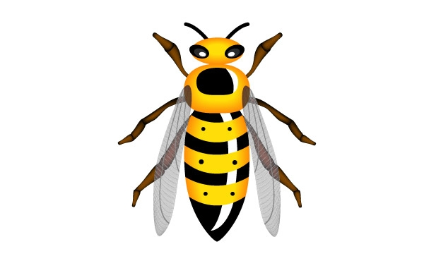 Hornet clipart free images 4