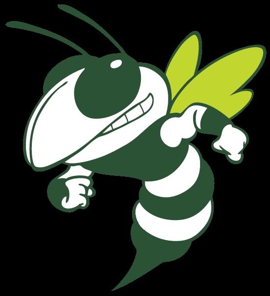 Hornet Clipart Wrenn Hornet Png